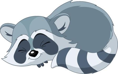 Illustration du cute drôle couchage de raton laveur cartoon