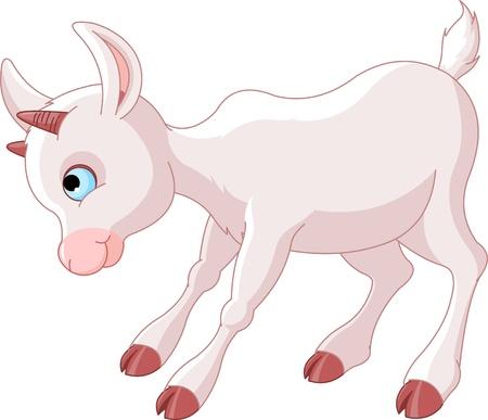 cabras: Enojado poco cabra de bebé Vectores