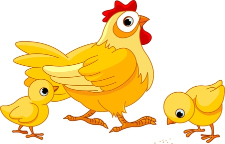 Mother hen with its baby chicks Vector