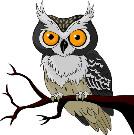 owl cartoon: Owl sitting upon a tree branch  Illustration