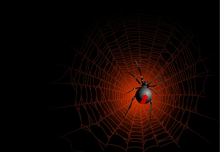spider web background: Halloween spider web background