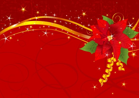 Christmas background with Red poinsettia  Vector