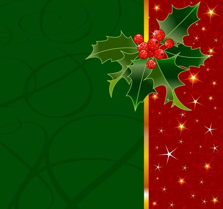holly berry: Christmas background with holly berry