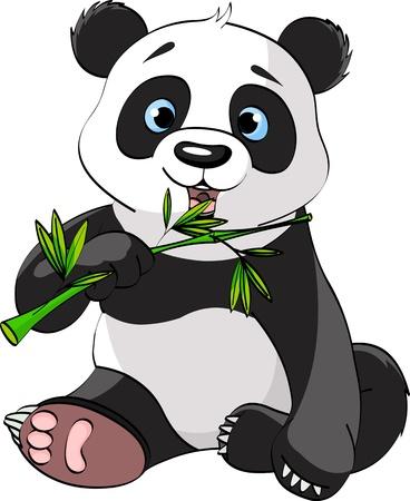 oso panda: Panda bebé sentado y comiendo bambú Vectores