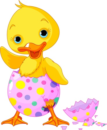 Cute Easter duckling  in the broken Easter Egg. Vector