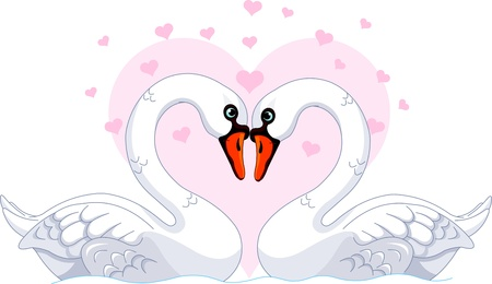 Two beautiful white Swans in love