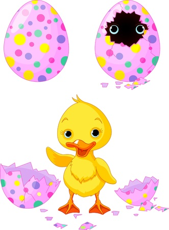 yellow duck: Easter duckling born from an egg Illustration