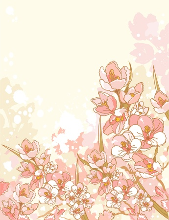 place for text: Spring flowers design with place for text Illustration