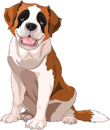 cartoon dog: St  Bernard Dog, sitting in front of white background
