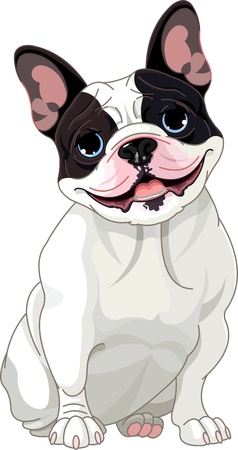 cartoon dog: French bulldog, sitting in front of white background