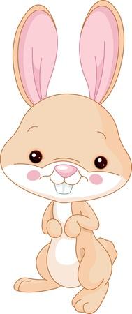 Fun zoo  Illustration of cute Bunny Illustration