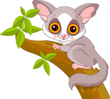 Fun zoo  Illustration of cute Galago Çizim