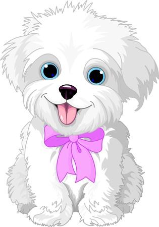 perro caricatura: Blanco lindo cachorro de perro faldero posando con cinta de color rosa Vectores