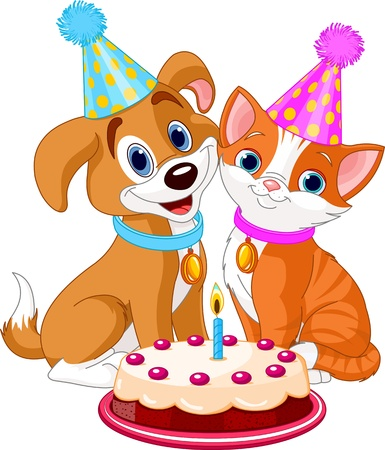 puppy and kitten: Cat and dog celebrating birthday