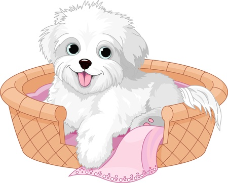 White fluffy dog resting in dog bed Vector