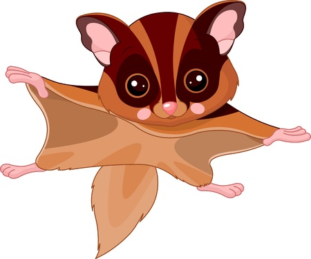 Fun zoo  Illustration of cute Flying squirrel Vector