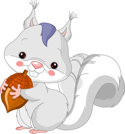 Fun zoo  Illustration of cute White squirrel Vector