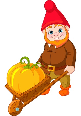fall harvest:  Illustration of cute Garden Gnome with wheelbarrow