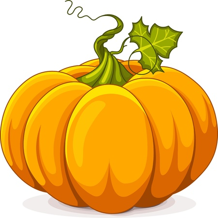 fall harvest:  Illustration of Autumn Pumpkin