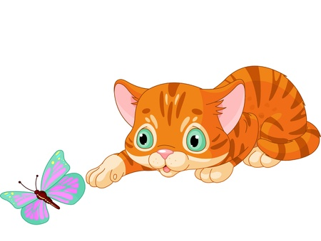 butterfly tail: Striped kitten plays with the butterfly
