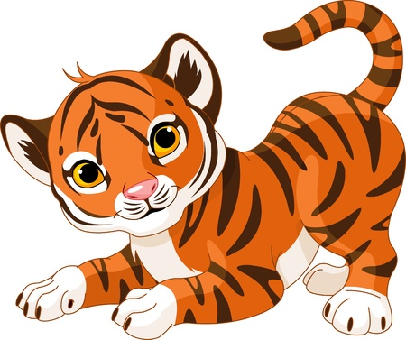 cub: Illustration of playful tiger cub