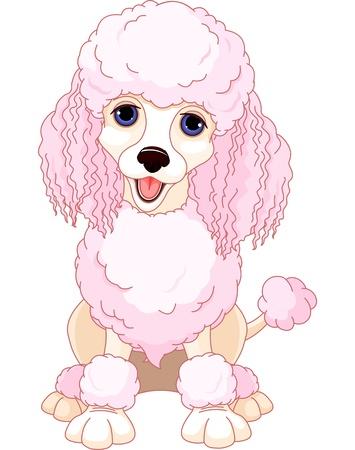 Ilustración de la elegante caniche rosado