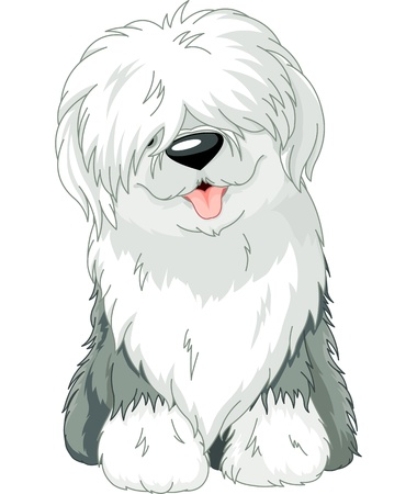 grooming: Illustration of sitting funny Old English Sheepdog