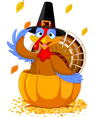 Illustration of a Thanksgiving turkey with pilgrim hat in the  pumpkin