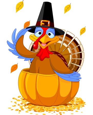 turkey thanksgiving: Ilustraci�n de un pavo de Acci�n de Gracias con sombrero de peregrino en la calabaza Vectores