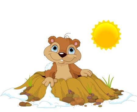 in ground: Carino Groundhog saltar fuori da un buco