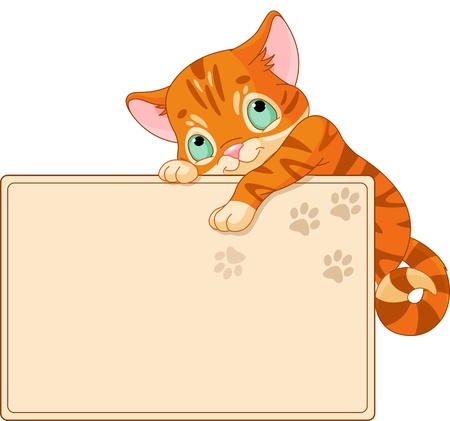 place card: Cute kitten on a place card
