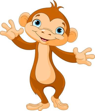 cute monkey: Cute baby monkey walking