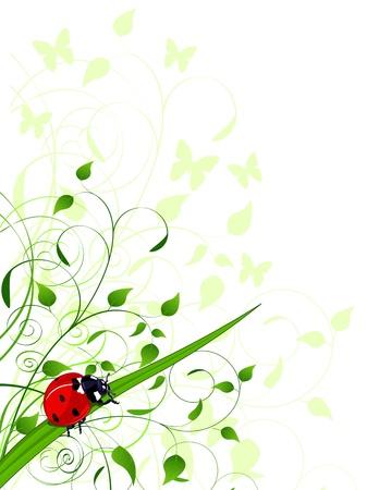 Spring achtergrond met planten en lieveheersbeestje Stock Illustratie