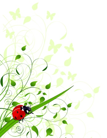 Spring  background with plants and ladybug Vector