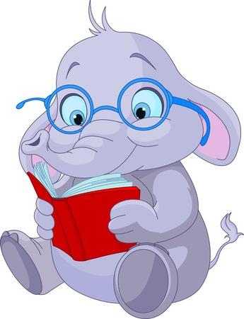 elephant cartoon: Carino elefante con occhiali da lettura di un libro Vettoriali