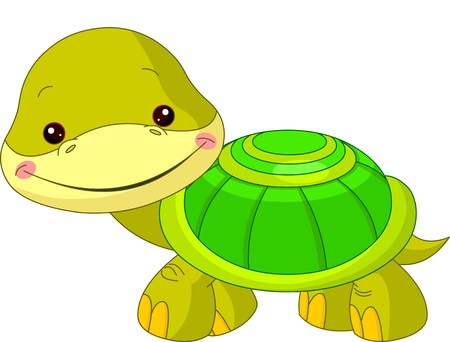 baby turtle: Fun zoo  Illustration of cute Turtle Illustration