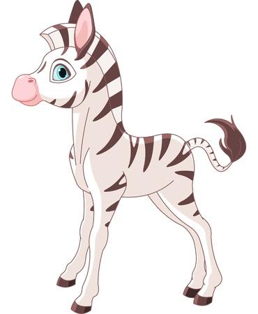 Illustration of cute zebra foal standing Çizim
