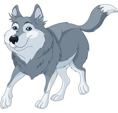 lobo: Ilustración o de dibujos animados lindo lobo corriendo Vectores