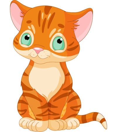 cute kitten: Sitting red tabby kitten