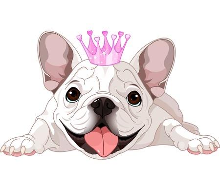 bulldog: Ilustraci�n de bulldog realeza con corona Vectores