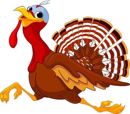 strut:  Cartoon turkey running, isolated on white background