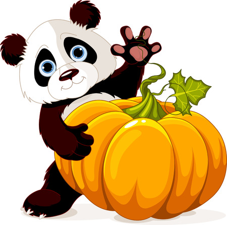 large pumpkin: Cute little panda holding giant pumpkin   Illustration