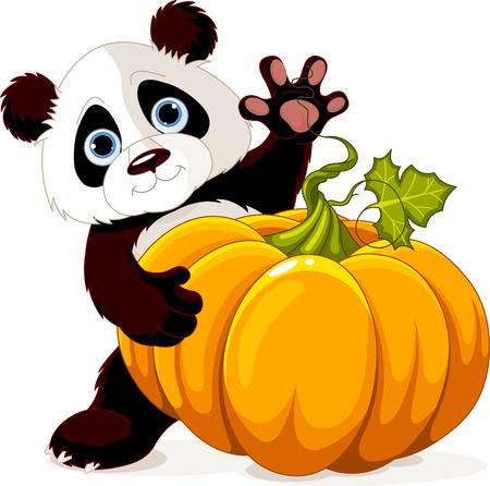 �  giant panda: Peque�o panda lindo que sostiene la calabaza gigante