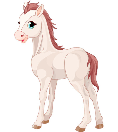 graphic illustration: Cartoon illustration of cute horse foal