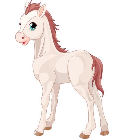 cartoon horse: Cartoon illustration of cute horse foal