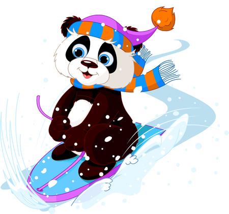 oso panda: Lindo punda trineo cuesta abajo la nieve del invierno de la montaña Vectores