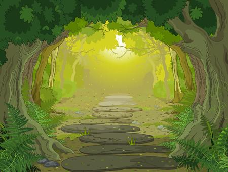 foret sapin: Paysage de for�t magique avec des arbres et des foug�res