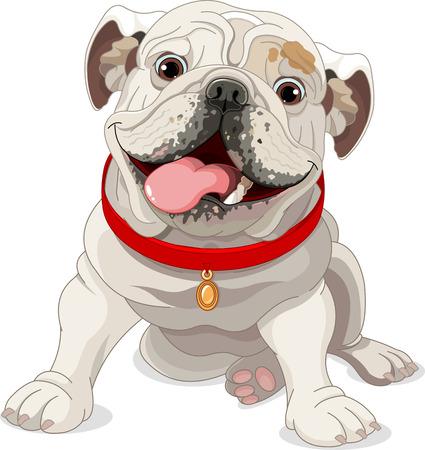 Illustration of English bulldog with red collar