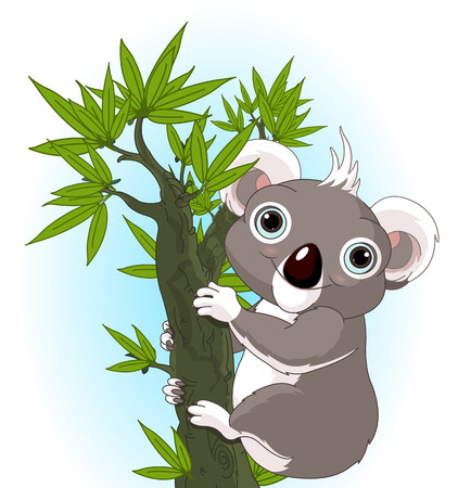 Illustration of Cute koala on a tree Vector