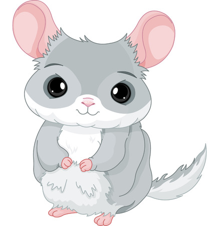 Illustration of lovely grey chinchilla